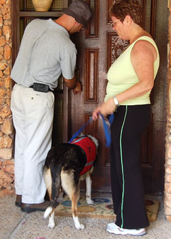 Alzheimer's Aid dog Keshet helps her partner Miriam arrive home.