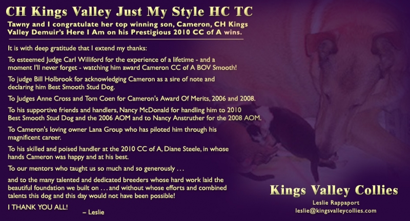 Collies Online ad from April 2010 for CH Kings Valley Just My Style HC TC, also known as Tawny