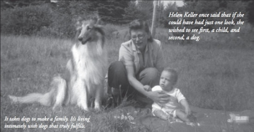 Kings Valley Collies founder Eva Rappaport as a young mother with Leslie and Angel.