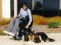 Kings Valley Collies mobility dog Silly helps his partner Meghla, even when she's in a wheelchair.