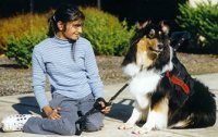 Kings Valley Collies mobility dog Silly with his partner Meghla.