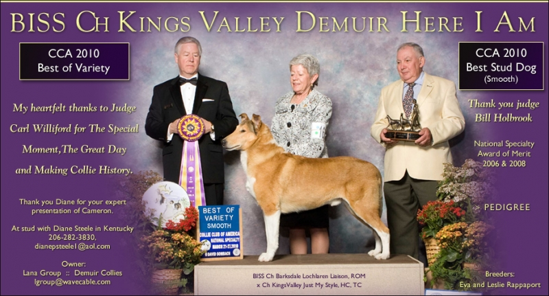 Collies Online ad from April 2010 for BISS CH Kings Valley Demuir Here I Am, also known as Cameron, and used with permission from owner Lana Group.