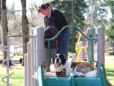 Saints for Safety, Security and Serenity trained Saint Bernard Penny to help an autistic boy, Nathan. Penny helps Nathan and mom Tammy on the slide at the park.
