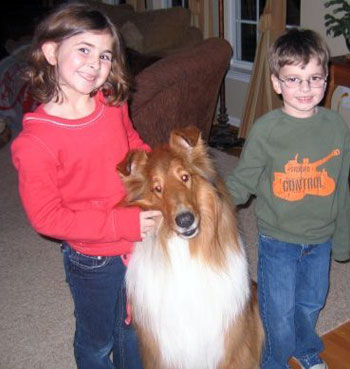 Barry, a collie who partners with an autistic child as a support dog, is an excellent family dog who is a friend to all the kids in the family.
