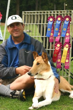 Kings Valley Collies dog Espresso from KVC dam Honey with awards.